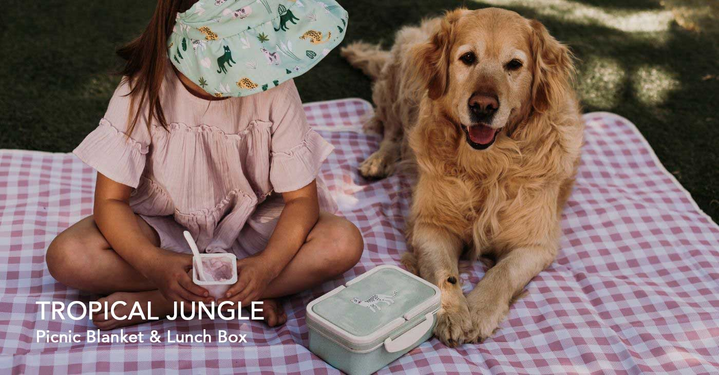 2.Picnic-Blanket-aaand-Lunch-Box